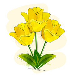yellow tulip flower isolated on white background vector image