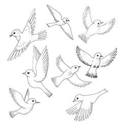 set of flying birds vector image