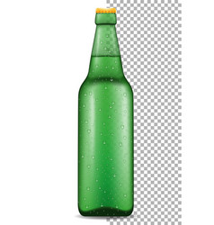 beer in bottle transparent stock vector image