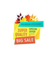 discount and big sale emblem with autumn leaves vector image