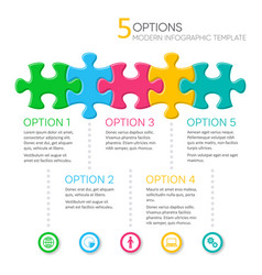 Five options modern infographic template vector