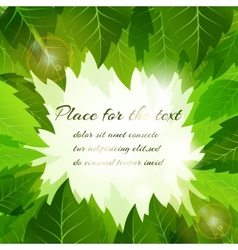 Frame of fresh green summer leaves vector image vector image