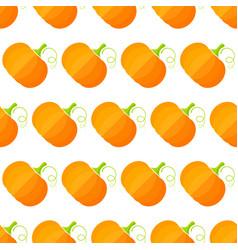 orange squash summer vegetable seamless pattern vector image