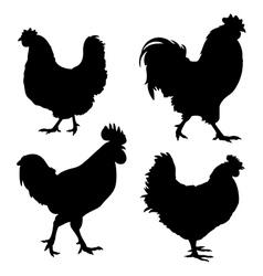 Chicken Silhouette vector image vector image