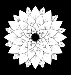 Black and white round floral natural mandala vector