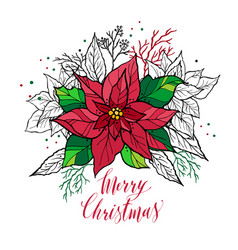 Christmas card of poinsettia with hand drawn vector