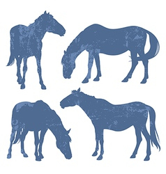 Grunge silhouettes of horses vector
