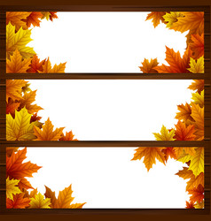 set of autumn leaves banner vector image