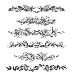 Vintage floral page dividers vector image vector image