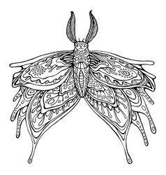 butterfly coloring page for children and adults vector image