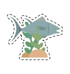 Atun fish sealife food coral vector