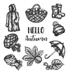 Doodle autumn icons set hand drawn vector