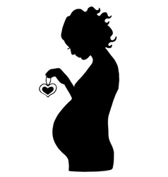 Pregnant woman with hear in her hands vector