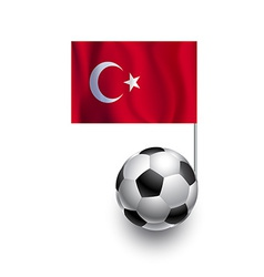 Soccer Balls or Footballs with flag of Turkey vector image vector image