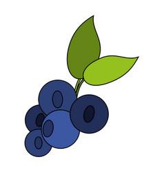 juicy fresh fruit cartoon vector image