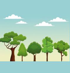 tree nature forest botanical design vector image