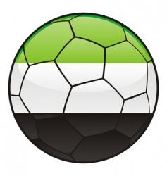 Afghanistan flag on soccer ball vector
