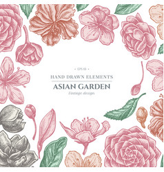 Floral design with pastel hibiscus plum flowers vector