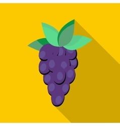 Grapes icon flat style vector