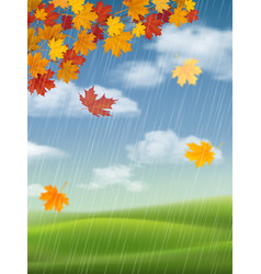 maple tree autumn landscape and rain vector image