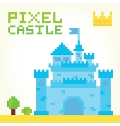Pixel art boy castle isolated vector image