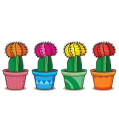 Realistic cactus vector image