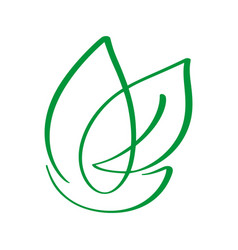 vegan green leaf nature logo template vector image
