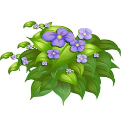 A flower plant vector image