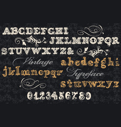 Collection of english abc in vintage style vector