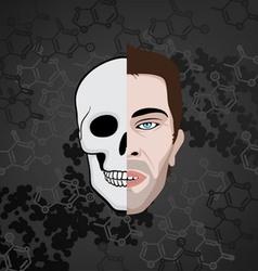 half face skull vector image