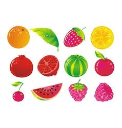 Juicy fruit and ripe berries vector