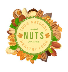 poster banner with nuts and seeds in round shape vector image