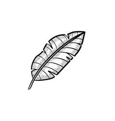 Banana leaf hand drawn sketch icon vector