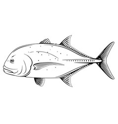 Giant trevally fish black and white vector