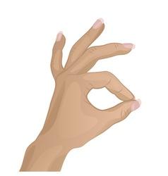 Hand Doing a OK Hand Sign vector