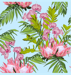 nature protea seamless pattern vector image