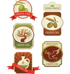 olive oil labels vector image