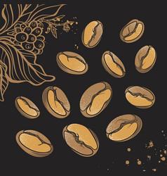 Set coffee beans vector