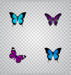 Set of beauty realistic symbols with polyommatus vector