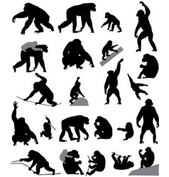 silhouettes of chimpanzees and cubs vector image