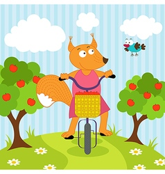 Squirrel riding bicycle vector