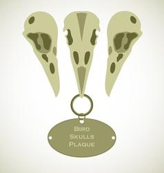 Three Bird Skulls vector image