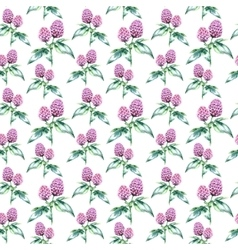 Watercolor clover herb seamless pattern vector image