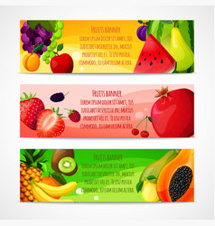 Fruits banners horizontal vector image