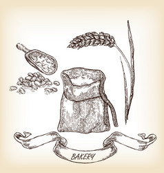 Grain meal wheat hand drawn vector