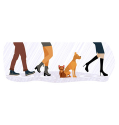 homeless cat and dog between men and women feet vector image