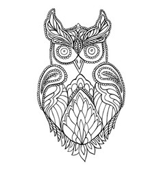 Owl coloring page for children and adults vector