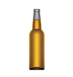 Beer bottle isolated on white background vector image vector image