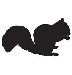 squireel silhouette vector image vector image