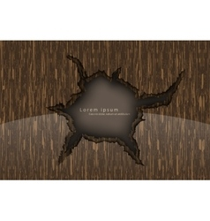 wooden background with shadows vector image
